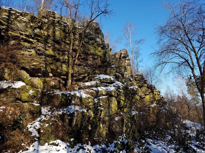 Rockenwalder Urwaldpfad (6)