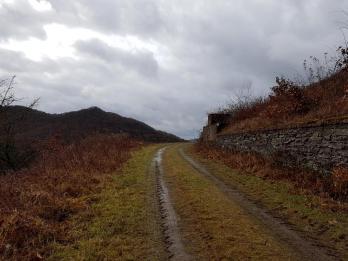 Saar-Riesling-Steig - Inov-8 Roclite 305 (22)