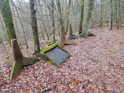 Saar-Riesling-Steig - Inov-8 Roclite 305 (59)
