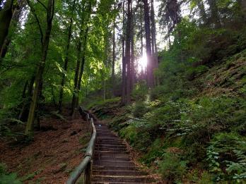 Trailrunning - Trier (19)