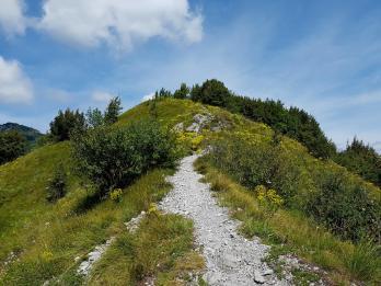 Trailrunning - Trier (27)