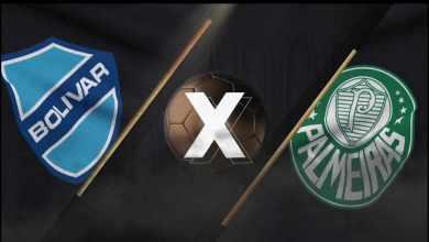 Bolívar x Palmeiras, Confira o Que Rolou Nesta Partida Pela Libertadores!