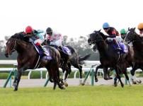 【競馬予想】第37回マイルチャンピオンシップGⅠ【2020】