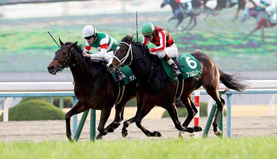 【競馬予想】シンザン記念GⅢ【2021】