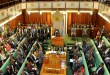 parliament uganda age limit
