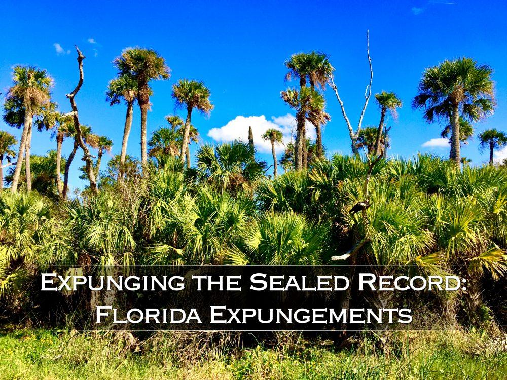 Expunging the Sealed Record: Florida Expungements