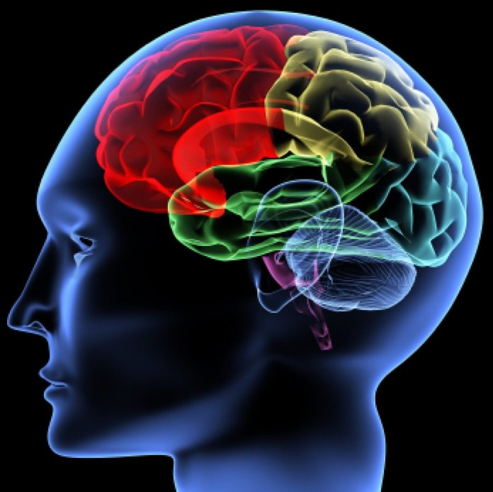 Be Careful! Check Out Ten Daily Habits That Can Damage Your Your Brain