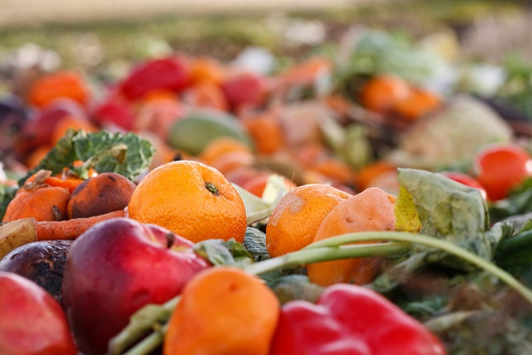 15 methods for preventing food loss and waste