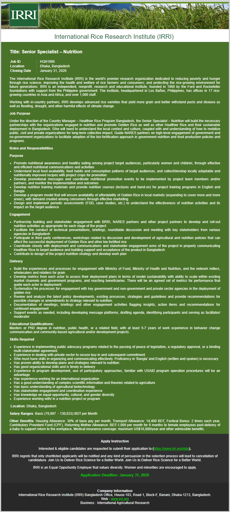IRRI job circular in 2020