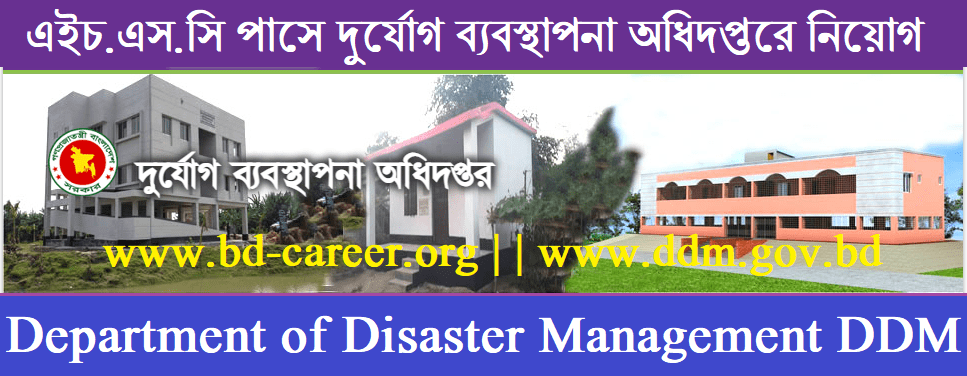 DDM Job Circular Banner