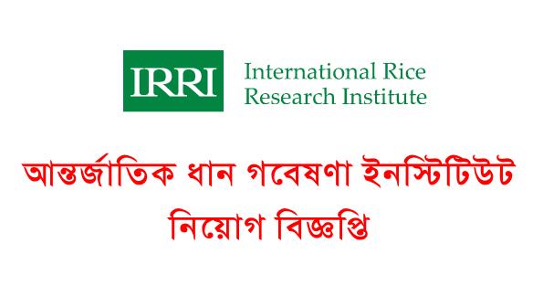 www irri org Job