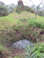One of many bomb craters