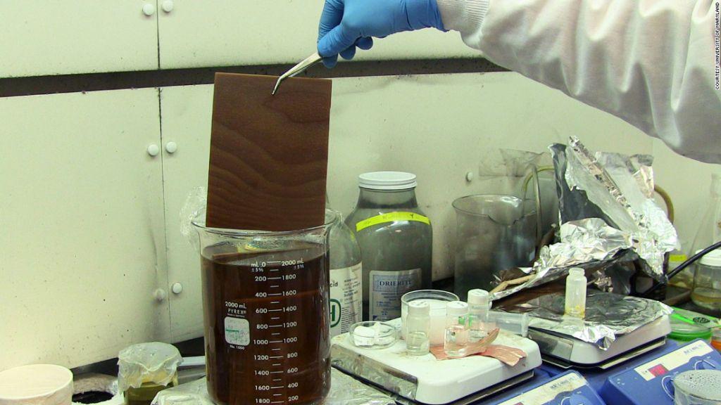 Uno de los investigadores muestra el proceso de
