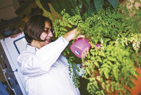 Ama y cuida de sus plantas Donde tiene su departamento, hay un hermoso jardín lleno de flores que da la bienvenida. Pero dentro de su casa cuenta con varias macetas con bellísimos helechos colgantes y plantas a las que cuida y riega a diario con mucho amo