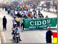 cidob_indigenas_bolivia