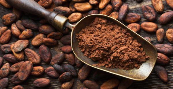 Dos muestras de cacao de origen paceño y beniano fueron seleccionadas entre las 17 mejores del mundo por los Premios Internacionales de Cacao 2015 en Francia
