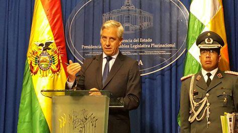 El vicepresidente Álvaro García Linera durante la conferencia que ofreció en el Palacio.