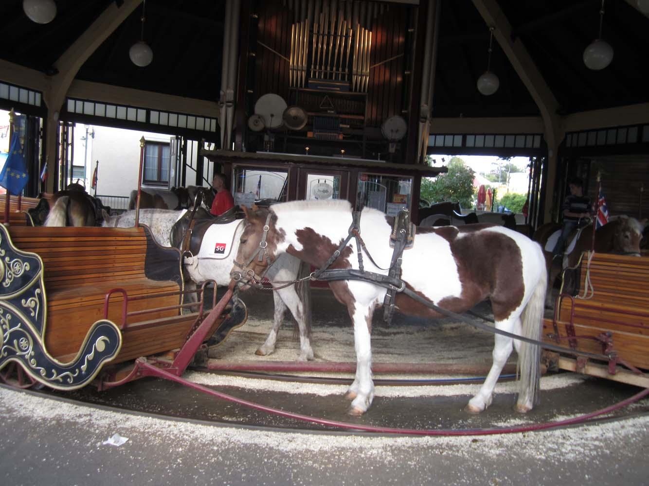 pony-caroussel-two