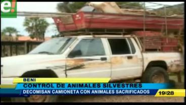 Decomisan animales silvestres sacrificados en Beni