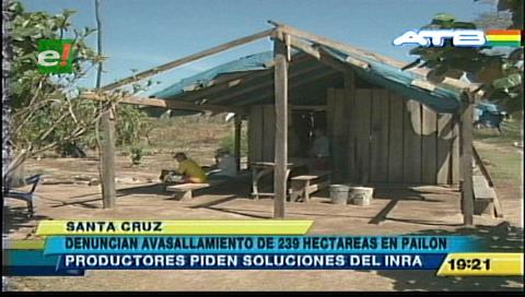 Denuncian avasallamiento de 100 hectáreas en Pailón