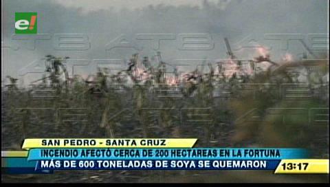 Incendio quemó 200 hectáreas de soya en la Hacienda La Fortuna