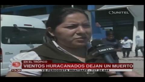 Una persona muere en El Chapare tras caerle un árbol encima por el viento