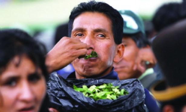 """Exceso de """"acullico"""" de coca puede causar cáncer de boca"""