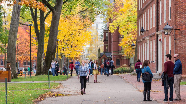 Foto: Un día de otoño cualquiera en la Universidad de Harvard. (iStock)