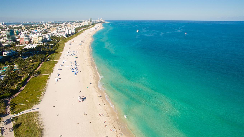 Todos los granos que componen la costa de Miami Beach fueron puestos ahí por los hombres Shutterstock