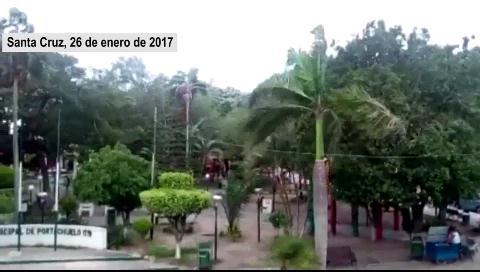 Vientos provocan caída de árboles y obstrucción de vías
