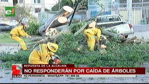 Alcaldía cruceña no pagará los daños causados por la caída de árboles