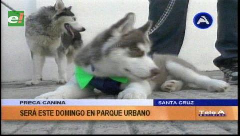 Segunda Preca Canina se realizará en parque Urbano