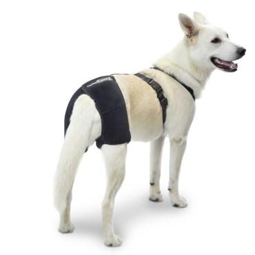 Soporte de cadera para perro con displasia