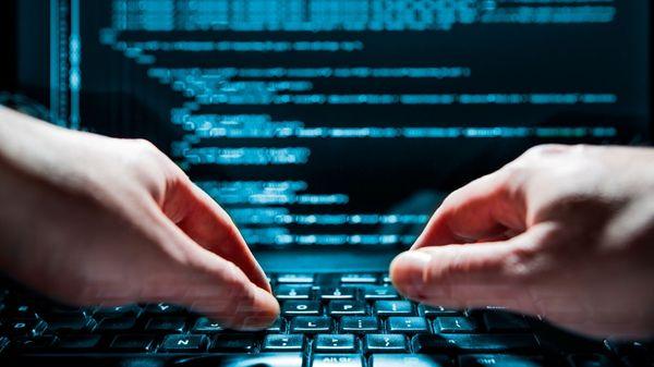 En total se dstribuyeron 74 GB de archivos y 2,3 GB de bases de datos de la información robada (shutterstock)