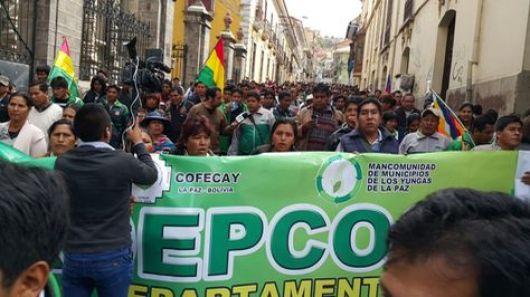 Cocaleros de los Yungas de La Paz marchan por el centro de la urbe contra de la propuesta de Ley de la Coca.