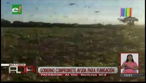 Gobierno comprometió ayuda para fumigación en Cabezas