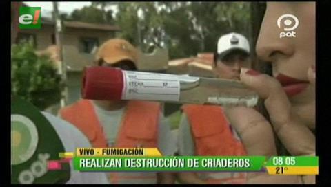 Santa Cruz: Verifican existencia de mosquitos en los distritos