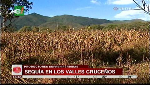 Asambleísta Vargas: La sequía está afectando a los valles cruceños