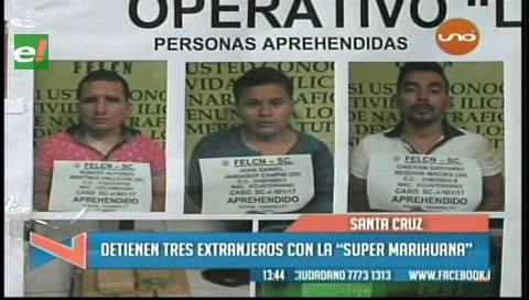 """Detienen a tres extranjeros en posesión de la marihuana """"cripy"""""""