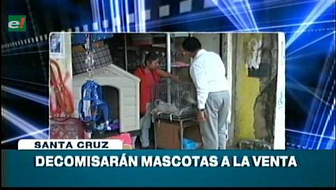 Video titulares de noticias de TV – Bolivia, noche del miércoles 31 de mayo de 2017