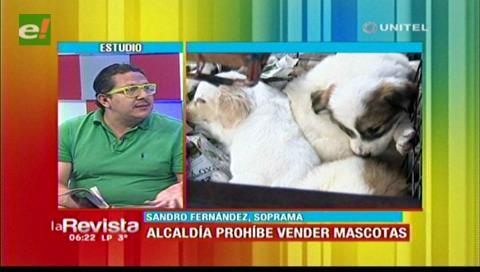 Soprama: Anular la venta de canes no es suficiente para combatir la rabia
