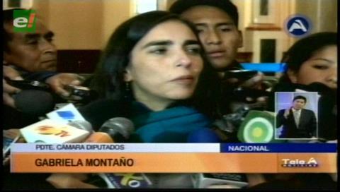 Diputada Montaño lamenta la actitud hostil de Chile con los transportistas bolivianos
