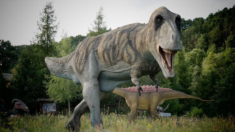 ¿Es posible crear un Parque Jurásico? Científicos ofrecen la respuesta definitiva