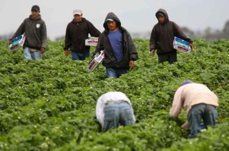 Las empresas que pidenlos visados H-2B para trabajadores temporales deben probar que no haydesempleados estadounidenses que puedan y quieran ocupar estospuestos de maneraparcial