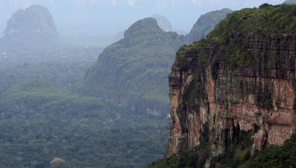 En diciembre todos los parques naturales estarán libres de coca: Santos
