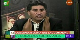 "Cocarico: ""Demanda de cocaleros de Colomi son inviables"""