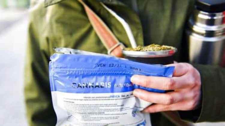 """Mate y cannabis, """"marca registrada"""" de Uruguay"""