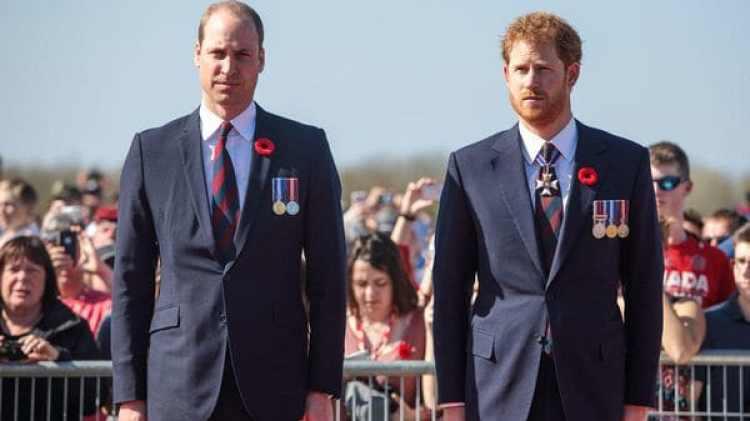 La oficina de los hijos de Diana, los príncipes Guillermo y Enrique, declinó hacer comentarios sobre el programa
