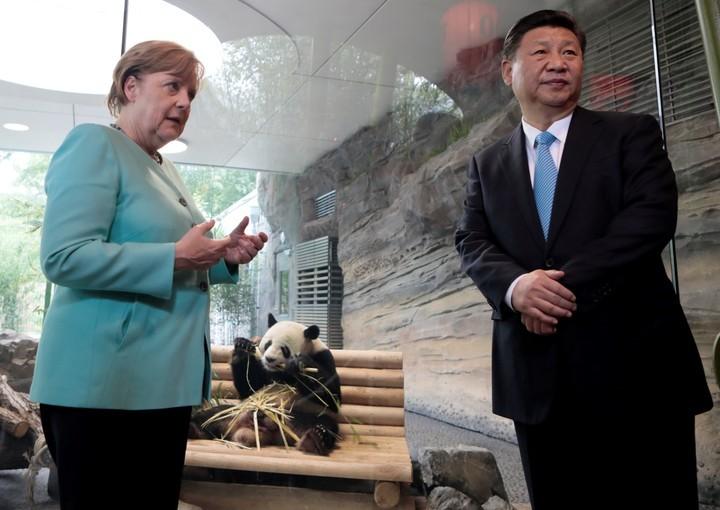 Xi Jinping conversa con Trump sobre el problema norcoreano