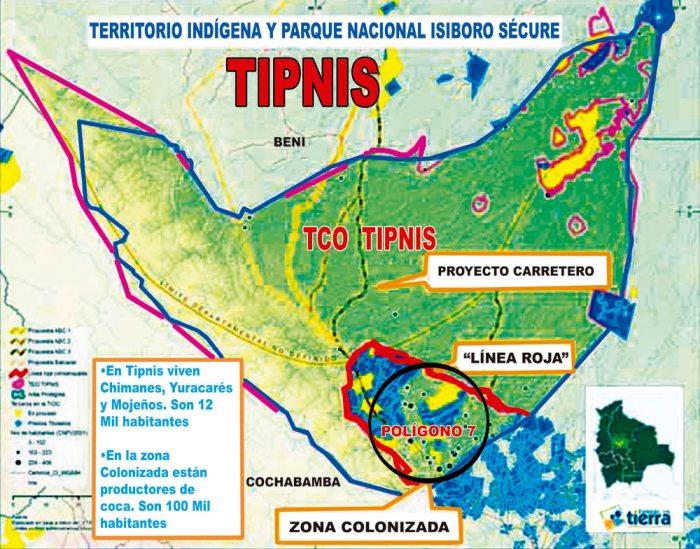 La Fundación Solón sostiene que el crecimiento de cultivos de coca en la región está mostrando una tendencia a la expansión de cocales dentro el Tipnis.